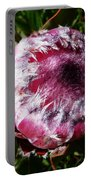 Protea Flower 1 Portable Battery Charger