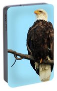 Proud Eagle Portable Battery Charger