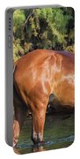 Proud Mare Portable Battery Charger