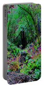 Psychedelic Fern Gully On Mt Tamalpais Portable Battery Charger