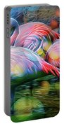 Psychedelic Ibis Portable Battery Charger