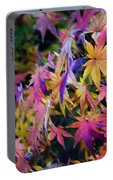 Psychedelic Maple Portable Battery Charger