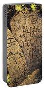 Puako Petroglyphs Portable Battery Charger