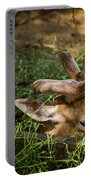 Pudu Deer Portable Battery Charger