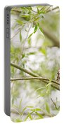 Puffed Up Little Owl In A Willow Tree Portable Battery Charger