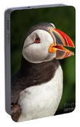 Puffin Head Portable Battery Charger