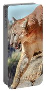 Puma Mountain Lion Nature Wear Portable Battery Charger