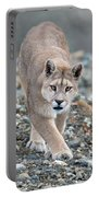 Puma Walk Portable Battery Charger