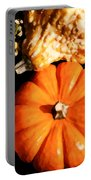 Pumkin And Gourds Portable Battery Charger