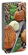 Pumkins In A Row Portable Battery Charger
