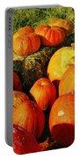 Pumpkin Meeting Portable Battery Charger