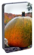 Pumpkin On Rock Wall Portable Battery Charger