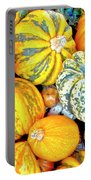 Pumpkins Portable Battery Charger