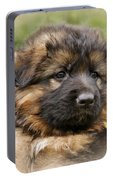 Puppy Portrait II Portable Battery Charger