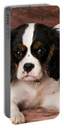 Puppy With Ball Portable Battery Charger