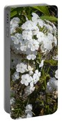 Pure Beauty Portable Battery Charger