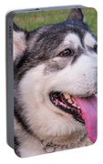 Purebred Alaskan Malamute Tongue Portable Battery Charger