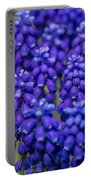 Purple And Blue Portable Battery Charger