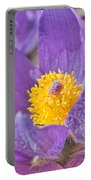 Purple And Gold - Bright Portable Battery Charger