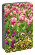 Purple And Pink Tulips In Canberra In Spring Portable Battery Charger