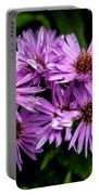 Purple Aster Blooms Portable Battery Charger