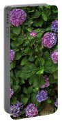 Purple Balls Of Color 2 Portable Battery Charger