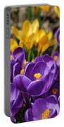 Purple Beauty Portable Battery Charger