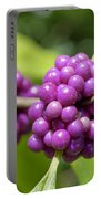 Purple Beautyberries Portable Battery Charger