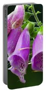 Purple Bells Horizontal Portable Battery Charger