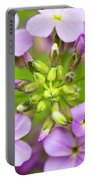 Purple Circle Of Dames Rocket Phlox In Spring Garden Portable Battery Charger