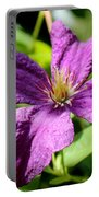 Purple Climber Portable Battery Charger