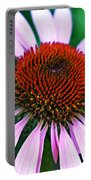 Purple Coneflower Close-up Portable Battery Charger