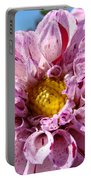Purple Dahlia Flowers Pink Floral Art Prints Canvas Garden Baslee Troutman Portable Battery Charger