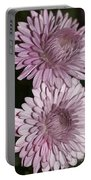 Purple Duo Portable Battery Charger