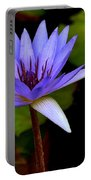 Purple Enchantment 6 Portable Battery Charger