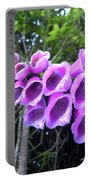 Purple Falls Portable Battery Charger