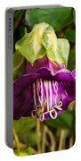 Purple Flower Of The Vine Known As Cathedral Bells Portable Battery Charger