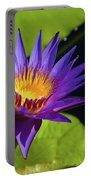 Purple Gold Portable Battery Charger