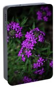 Purple Kiss Portable Battery Charger
