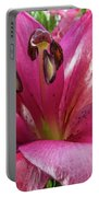 Purple Lilly In A Flower Bouquet Extreme Close-up Portable Battery Charger