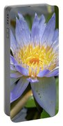 Purple Water Lily Flowers Blooming In Pond Portable Battery Charger