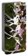 Purple Lycoris Portable Battery Charger