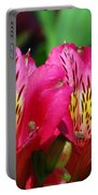 Purple Peruvian Lily Portable Battery Charger