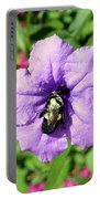 Purple Petunia With A Bee Portable Battery Charger