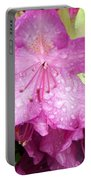 Purple Pink Horizontal Portable Battery Charger