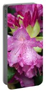 Purple Pink Portable Battery Charger