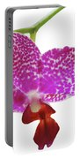 Purple Spotted Orchid On White Portable Battery Charger
