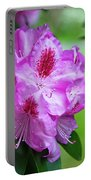 Purple Spring 15 Portable Battery Charger