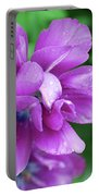 Purple Tulip Blossom With Dew Drops On The Petals Portable Battery Charger