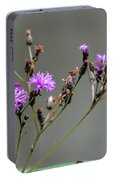 Purple Wildflower In Shiloh National Military Park, Tennessee Portable Battery Charger